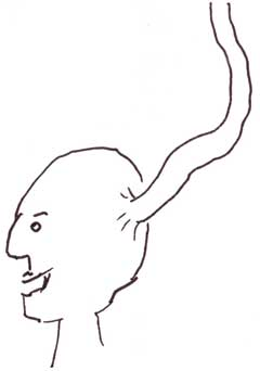 al brain tube